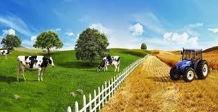 Tarıma Dayalı Yatırım Projelerinin Fiziki Olarak Tamamlanma Tarihi 29 Mayıs 2020'ye Uzatıldı